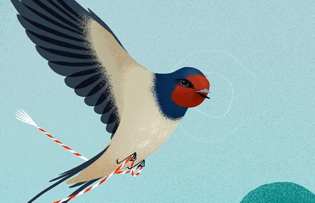 Bird Songs of Love Put a Playful Twist on Tradition