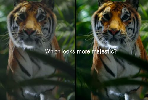 Cheil & Samsung Ask: What Looks More Breathtaking?