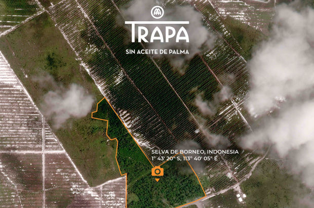 TRAPA Saves Area of Rainforest with New 'Unrepeatable Photograph' Campaign