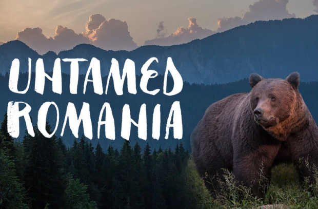 Documentary Feature 'Untamed Romania' Releases on All Streaming Platforms