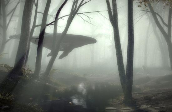 A Whale of a Spot from Gentleman Scholar