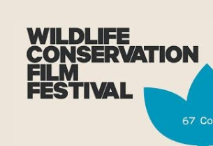 Wildlife Conservation Film Festival Names DDB New York Agency of Record