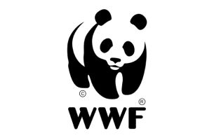 Uncommon Creative Studio Wins WWF Advertising Account