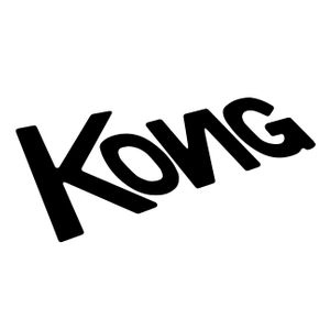 Kong Studio
