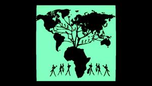 Radio LBB: Roots VXI