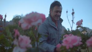 Airbnb Films Showcase Charming Properties and Passionate Hosts
