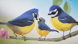 Aardman and Catsnake Capture the Beauty of Birds in Film for RSPB Legacy