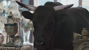 MoneySuperMarket's Calming Bull Keeps the Stress Out of Bills