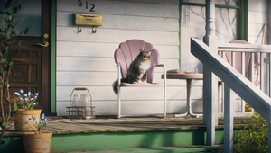 Gruff Cat Gets Emotional about Litter in Humorous Cat's Pride Ad