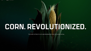 Resn and Bader Rutter Win Awwwards Site of the Year for 'Pioneer - Corn Revolutionized'