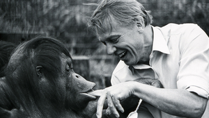 """Don't Let ZSL Become Extinct!"" Sir David Attenborough Urges"