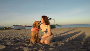 Sniffing You Out for Sun Safety: Dogs Detect Beach-Goers Not Using Sunscreen in Adorable Campaign