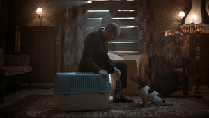 Behind the Work: The Process Behind PEDIGREE's Powerful Promotion for Helping Homeless Dogs