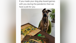 Entertainment Company Spin Master Uses Meme-Based Recruiting Campaign to Land Game Lovers for Marketing Team