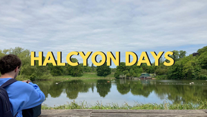 Radio LBB: Halcyon Days