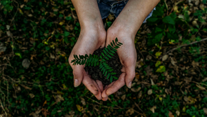 How Sustainability and Influencers are Shaping Social Change