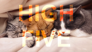 High Five: Japan