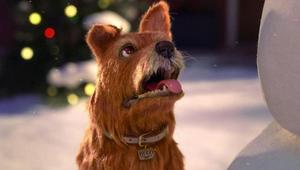 Jeff Low Directs Man's Best Friend for Greenies Christmas Spot