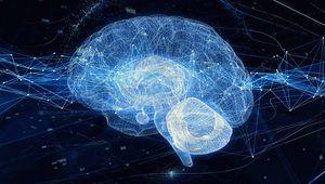 Marketing Isn't Brain Surgery. It's Neuroscience