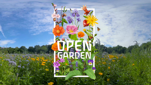 Weleda's Celebrates Centenary Anniversary with Invitation to 'The Open Garden'