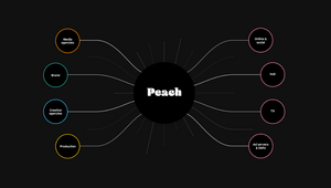 Peach Launches New Market-leading Global Digital Video Ad Delivery Platform with a Dedicated Panel Series and Product Demo