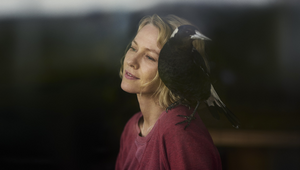 Alt.vfx Celebrates Success of Glendyn Ivin's 'Penguin Bloom'