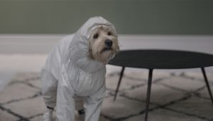 Farrow and Ball Hilariously Heroes the Stain Resistance of Modern Emulsion