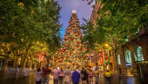 Scoundrel Projects Reveals First Phase of Christmas in Sydney