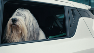 Suzuki Stays Slick in Satisfying Choreographed Spot from Iris and Stink
