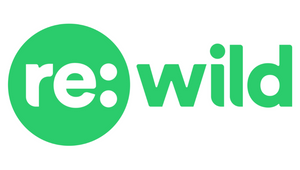 Tank Design Tapped to Develop Re:wild's New Visual Identity