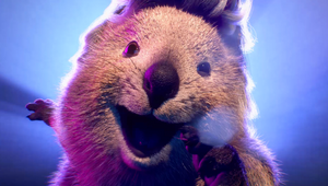 Move Over Bonnie Tyler, HBF's Quokkas Urge Aussies to 'Hold Out For a Zero'