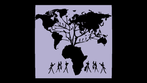 Radio LBB: Roots Volume XVII