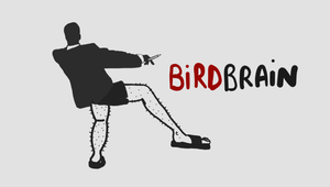 Why Birdbrain Wants You to Draw a Picture for Them