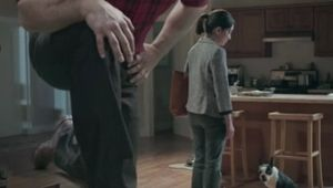 Cutwater Lends Giant Advice for New Brawny Paper Towels Spots
