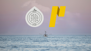 Real Good Fish Appoints Partners + Napier as Agency of Record