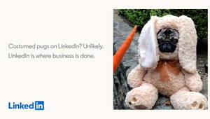 Costumed Pugs Don't Belong on LinkedIn in Campaign from 215 McCann