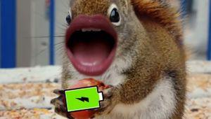 This Awesome Samsung Spot Is a Looooooong-Lasting Earworm