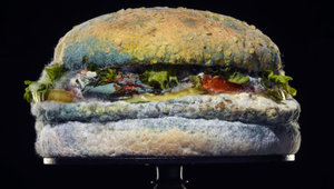 Fresh or Funky? System1 Crunches the Numbers on Burger King's Moldy Whopper