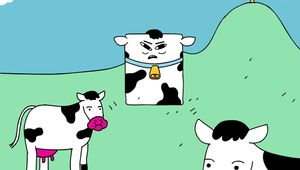 W+K - RXBar B.S. Hotline - Tofu